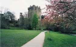 Ruinen in einem Park in Dublin