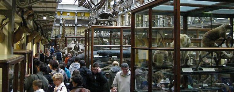 Das Museum beherbergt über 10.000 verschiedene Exponate
