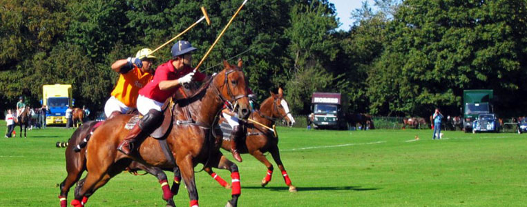 Rasante Action kann man bei Polo Matches im Phoenix Park bestaunen