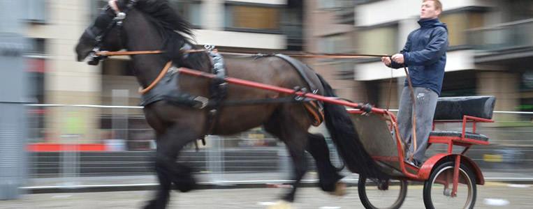 Smithfield Pferdemarkt