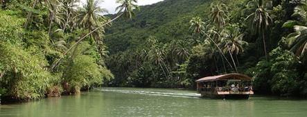 philippinen dschungel