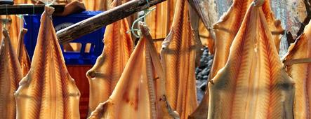 madeira stockfisch