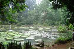 Parks Indonesien