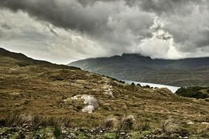 Connemara Scenics