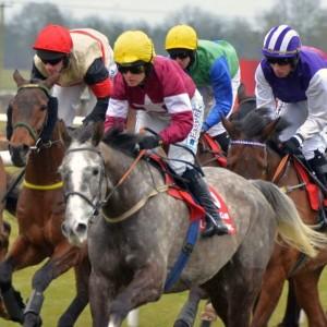 Pferde, Jockeys, Wetten, Spannung - die berühmten Galway Races werden auch in diesem Jahr wieder zahlreiche Rennsport-Fans anlocken