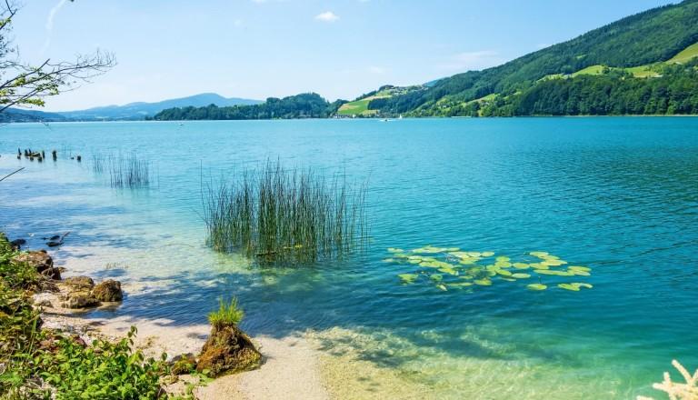 Oesterreich-See-Natur