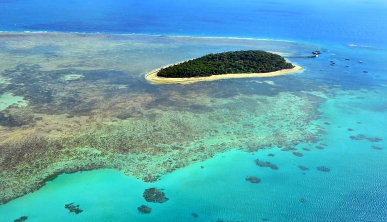 Die Green Island unweit von Cairns