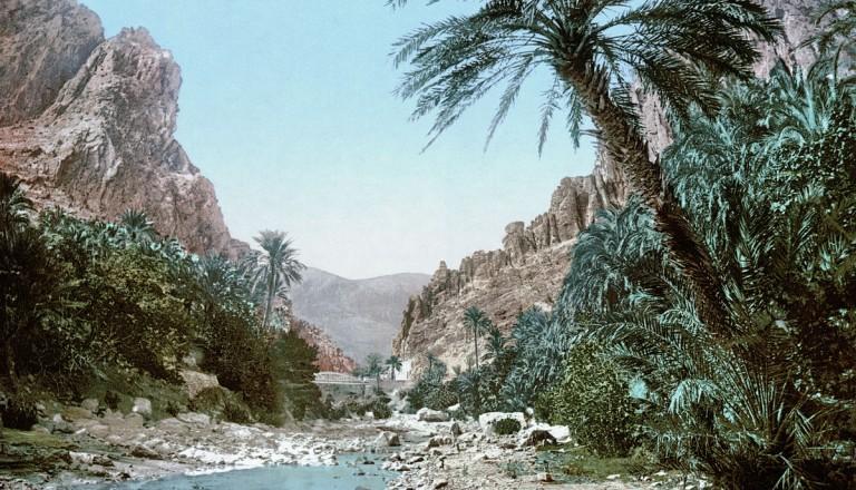 Die Oase El Kantara bei Djerba.