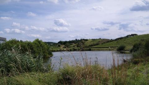Halden Ruhrgebiet