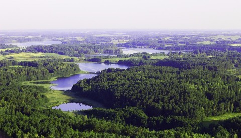 Landschaft Litauen