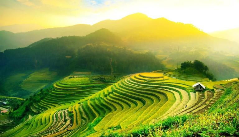 Pauschalreise-Vietnam-Landschaft