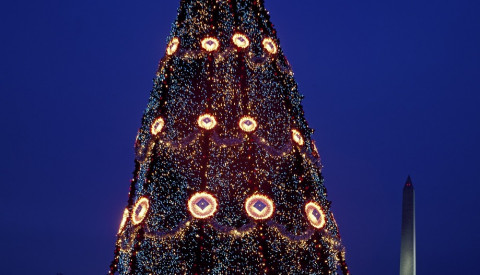 Washington Dc - National Christmas tree