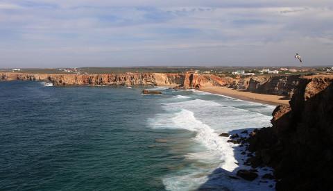 Die Algarve bietet optimale Vorausetzungen für einen Surfurlaub in Portugal