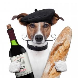 Baguette Hund Wein