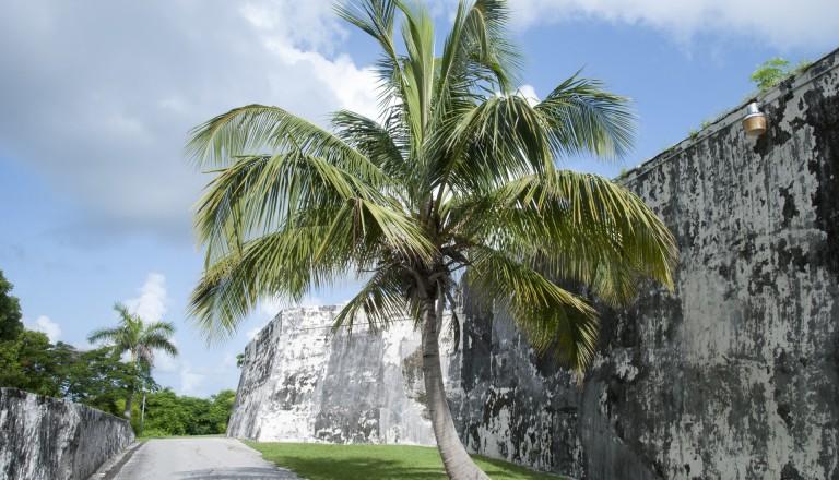 Die Festung Fort Charlotte in Nassau Bahamas