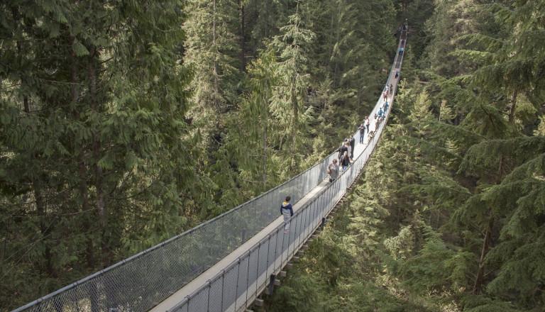 Die Capilano Suspension Bridge. Vanacouver Kanada