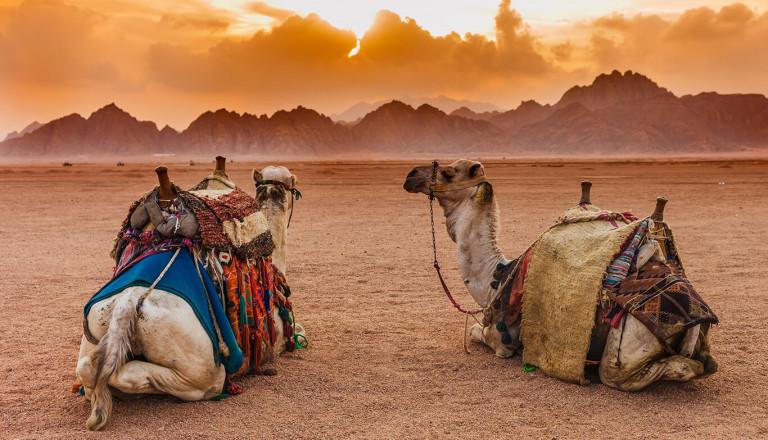 Cluburlaub - Tunesien