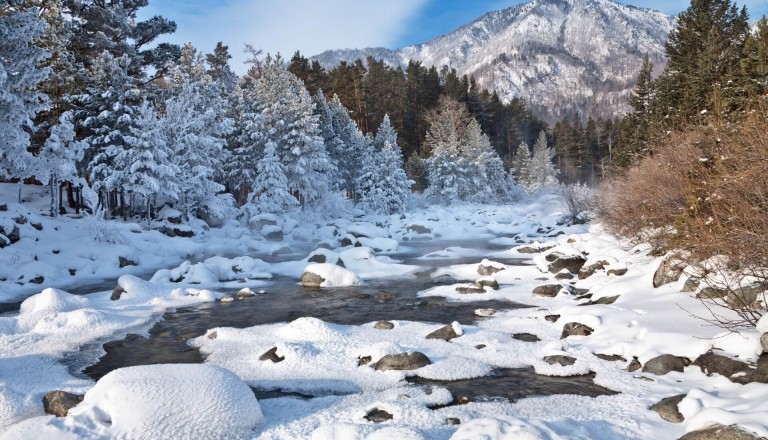 Dezember Urlaub Reisekalender