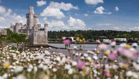 Dingle Wandern Irland