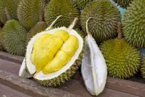 Durian Essen Reisen