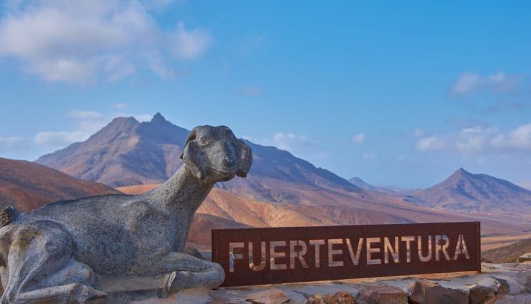 Fuerteventura Kanaren Surfurlaub