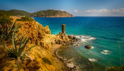 Urlaubsfeeling pur auf Ibiza!