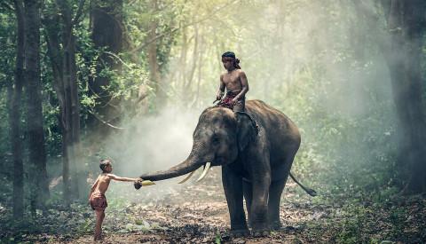 Abenteur Indien Individualreisen