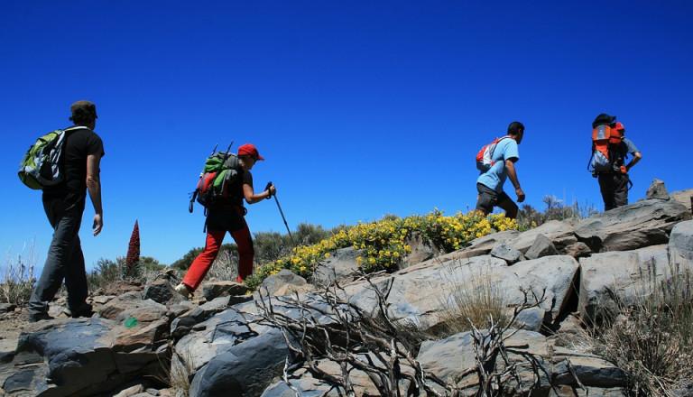 Trekking in Teide Nationalpark.