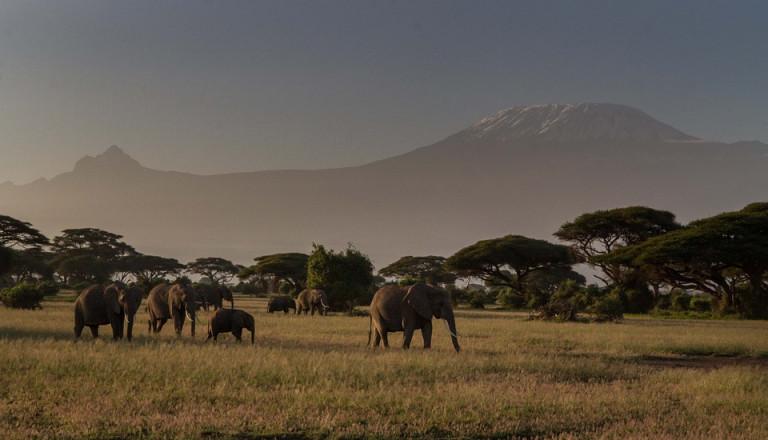 Reisen nach Kenia