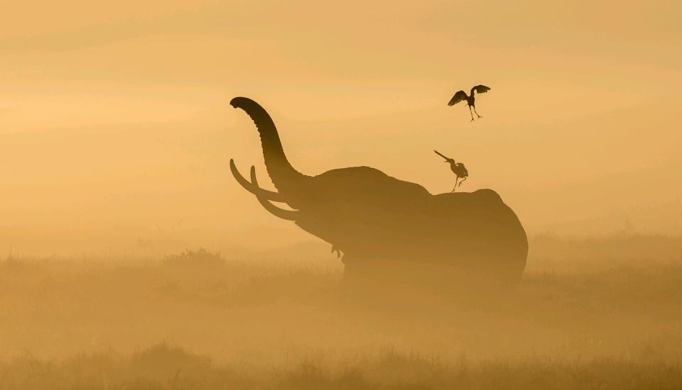 Kenia Rundreisen