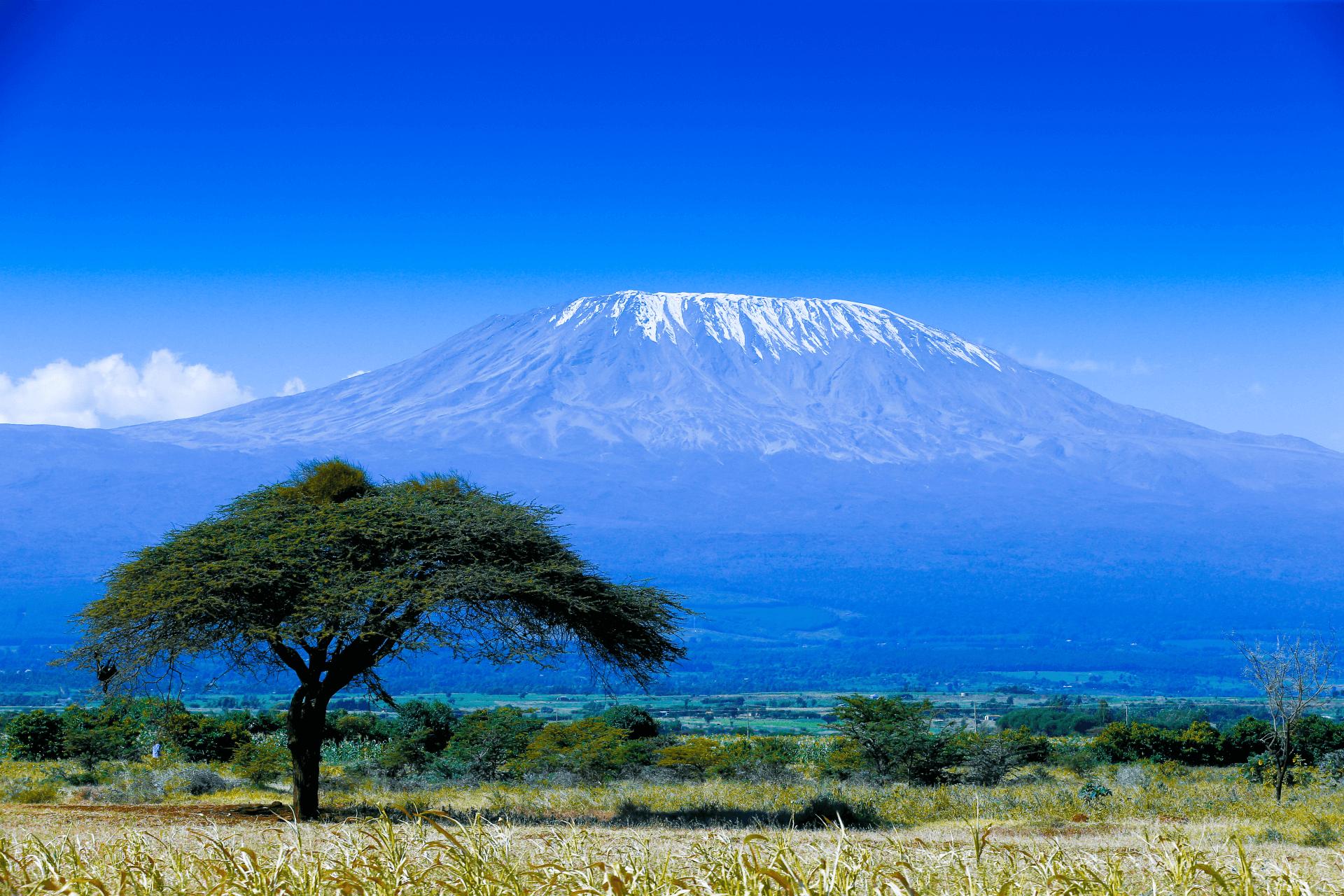 Kilimandscharo Massiv