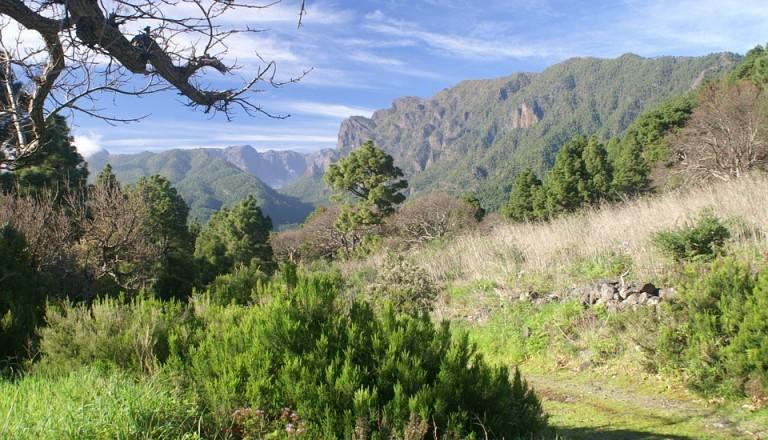 Reisen nach La Palma