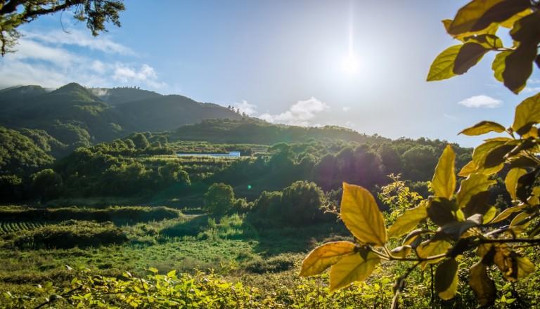 La Palma Pauschalreisen Natur