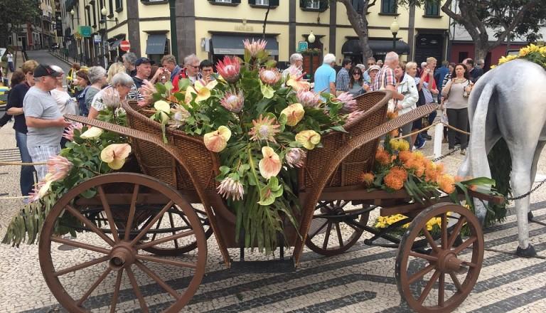 Festivals und Events beleben die Blumeninsel Madeira.