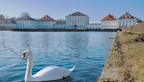 Schloß Nymphenburg und Schwan