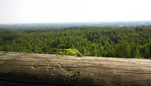 Nationalparks in Estland