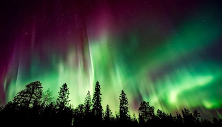 Wunderschöne Nordlichter auf Ihrer Norwegenreise