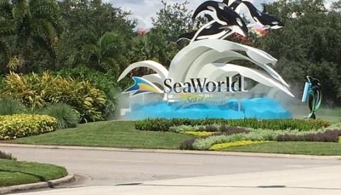 Die Seaworld Parks garantieren Spaß und Vergnügen.