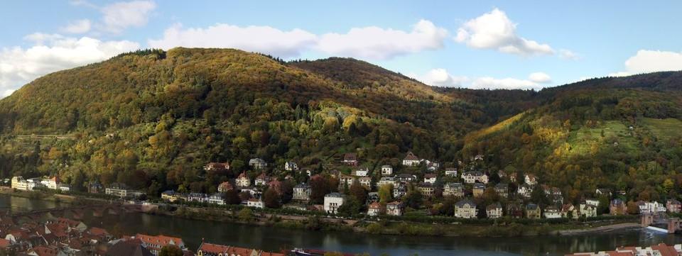 Heidelberg Neckarwiesen