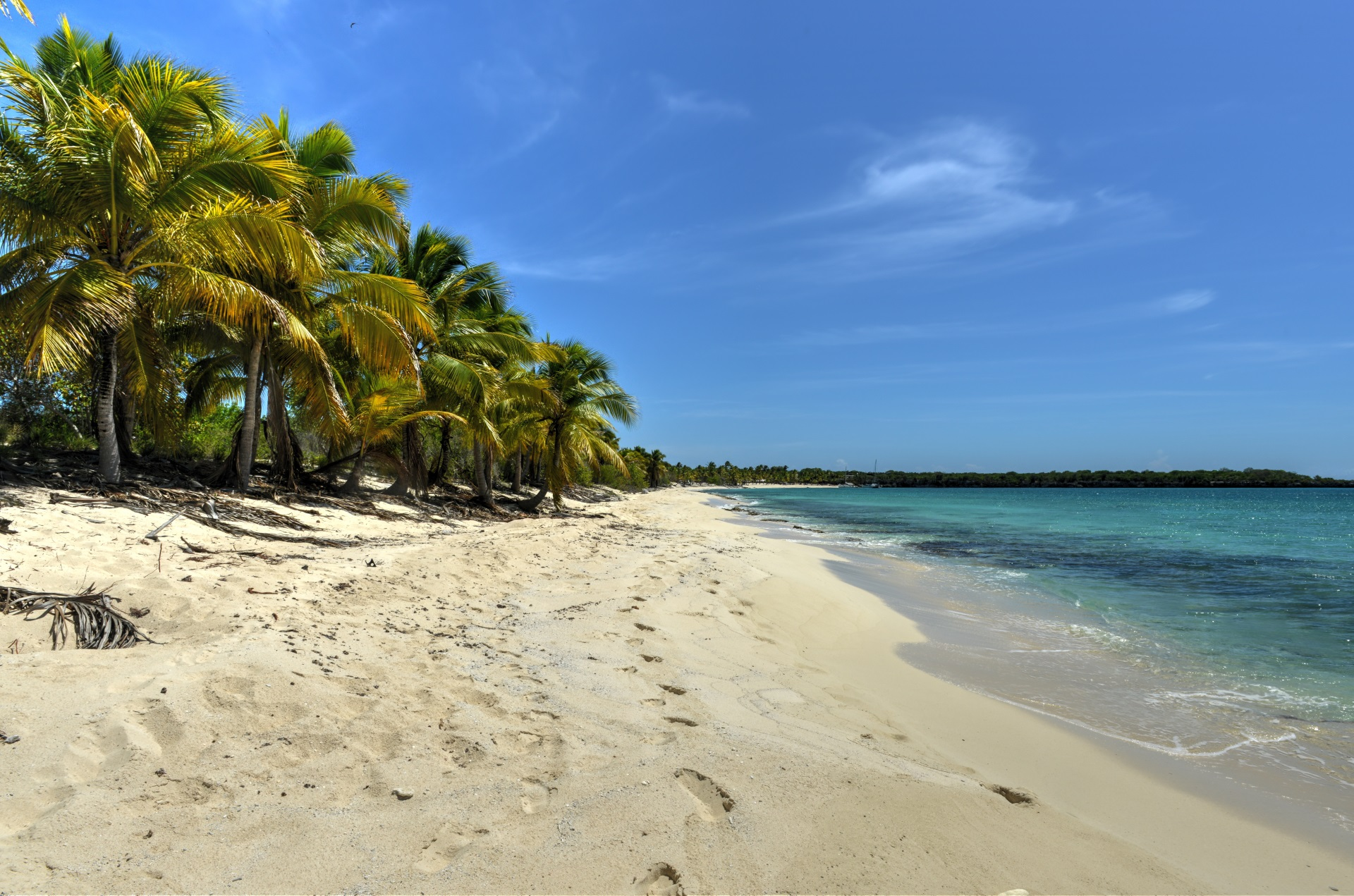 Die Isla Catalina bei Punta Cana.