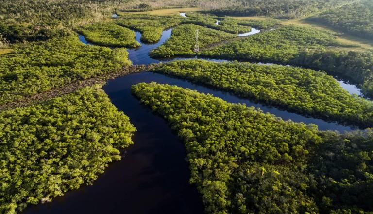 Amazonas Brasilien Kreuzfahrt