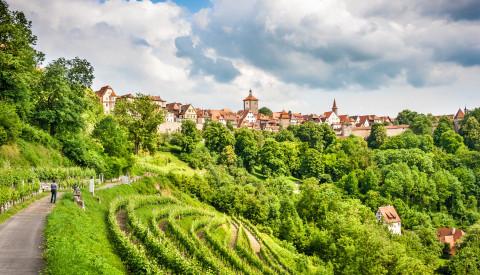 Rothenburg Weinberge