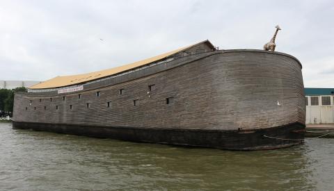 Kultur in Rotterdam