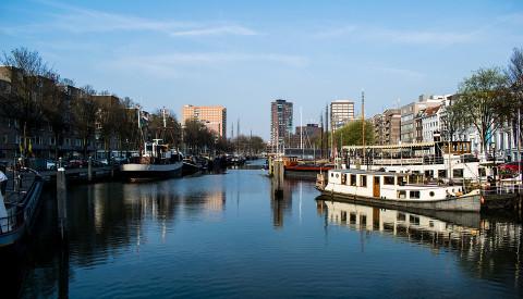 Erkunden Sie Rotterdam auf einer Spido Tour.