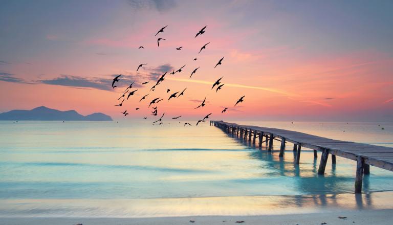 ruhiger Strand auf Mallorca