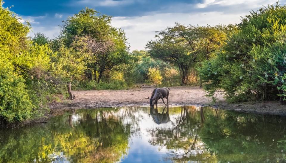 Rundreisen Botswana