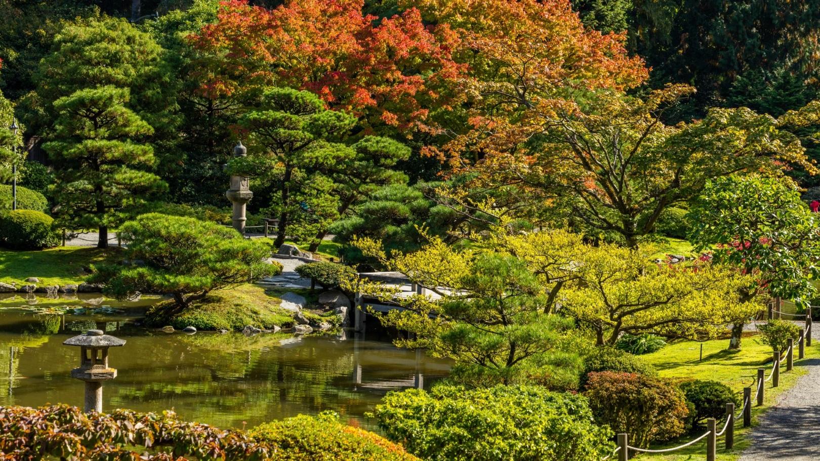 Der japanische Garten in Seattle. Outdoor auf Städtereisen
