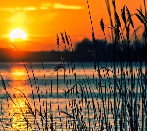 4 Tage Wandlitzer See inkl. Frühstück zur Eigenanreise