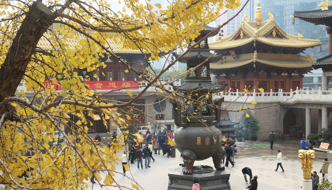 Besichtigen Sie Shanghais Tempelanlagen.