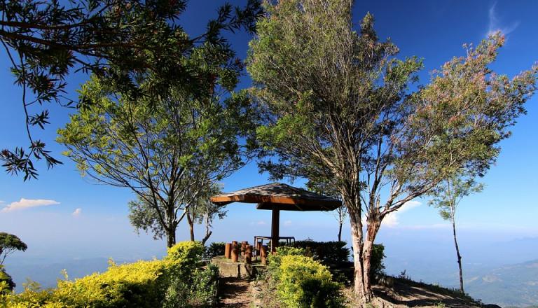 Sri Lanka Wellness Meditation